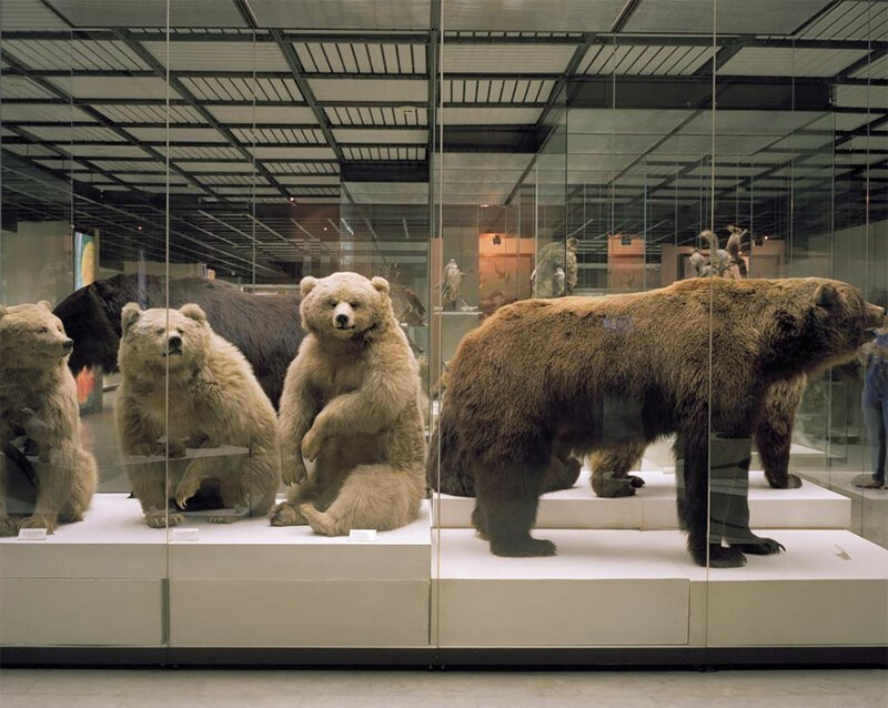 Потерянные во времени: фотографии из московских музеев