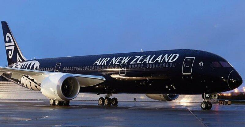 Высокомерных богачей выгнали из самолета за отказ знакомиться с инструкцией по безопасности