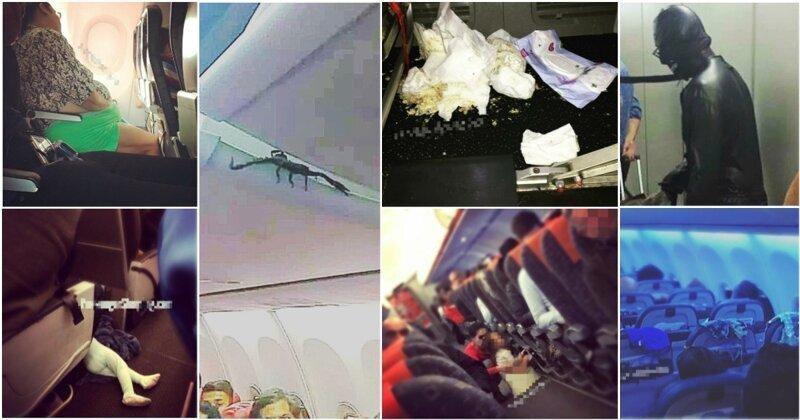 25 самых безумных и позорных фото и видео, сделанных пассажирами в самолетах