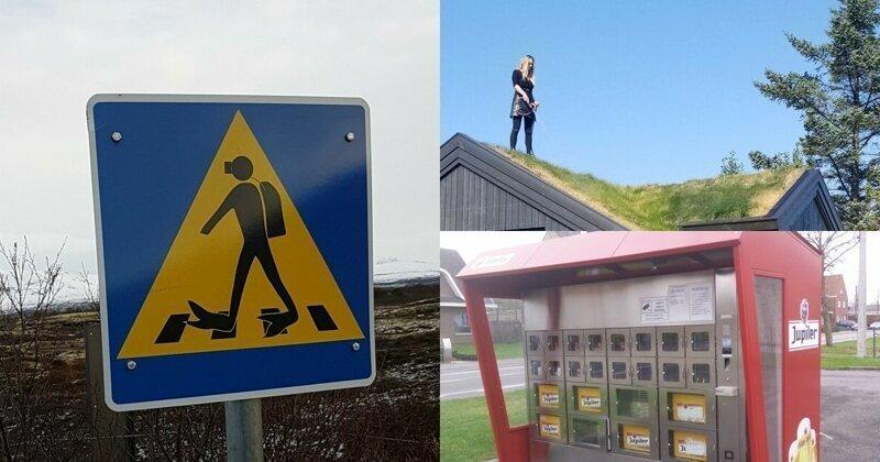 20 странных и удивительных вещей, которые можно увидеть в Исландии