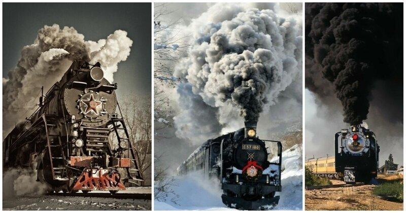 Мощь, дым и копоть: паровозы, которые тронут вашу душу