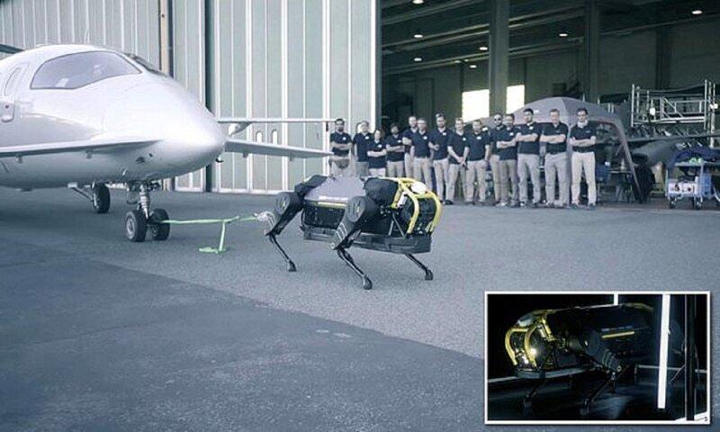 Собаки-роботы идут на помощь людям