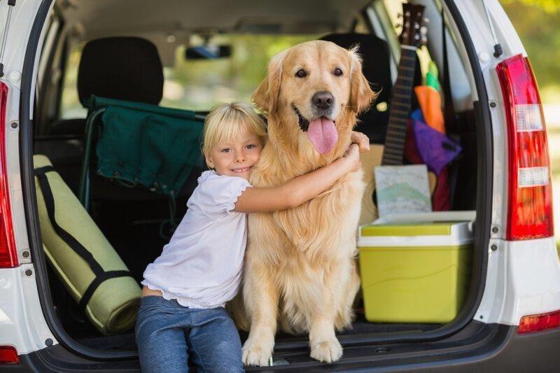 Правда ли, что ездить можно и в багажнике?