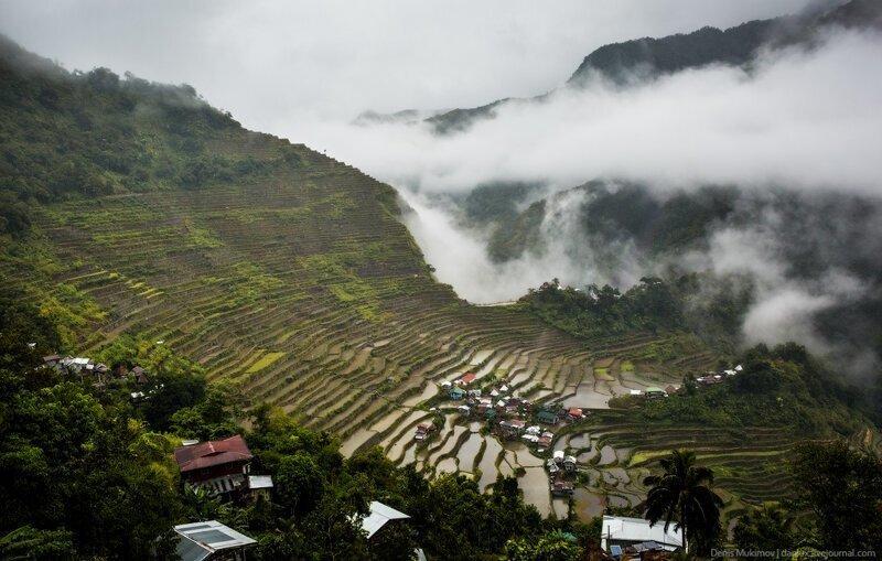 Как выращивают рис на Филиппинах