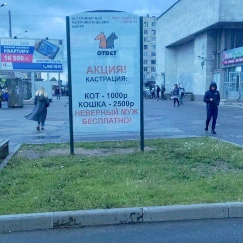 Петербуржцам не понравилась реклама бесплатной кастрации неверных мужей
