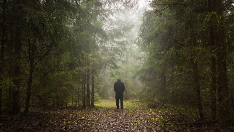 Почему заблудившийся человек ходит кругами?