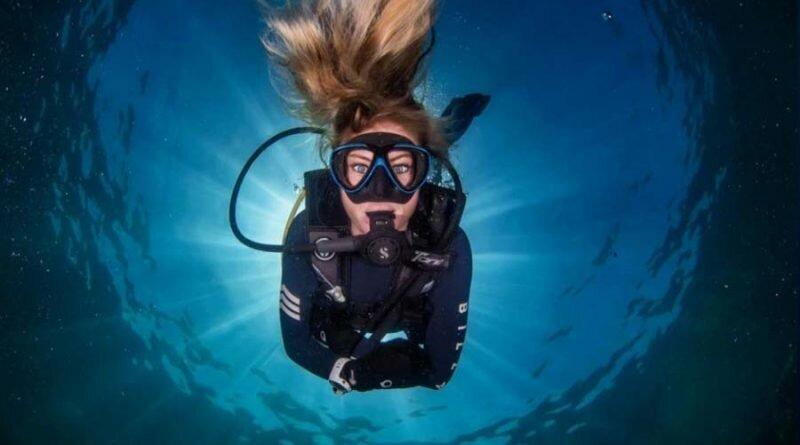 Дайвер показывает потрясающие снимки с удивительной рыбой и акулой в надежде, что люди научатся уважать море