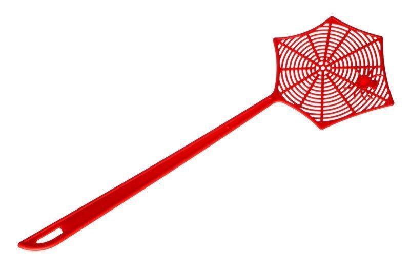 Почему убить паука плохая примета?