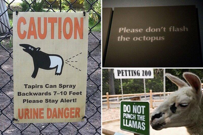 Смешные таблички из зоопарков