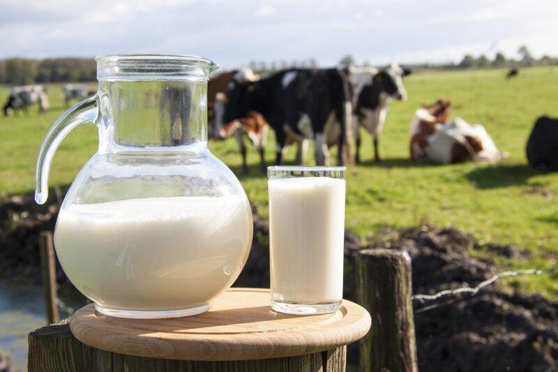 Почему в грозу киснет молоко?