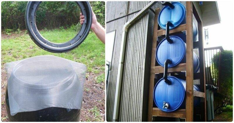 Как собрать дождевую воду на дачном участке