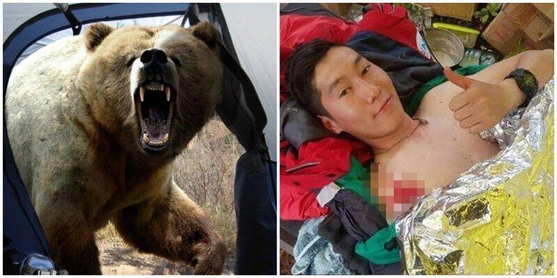 Под Магаданом медведь пришёл в палаточный лагерь и набросился на молодого исследователя