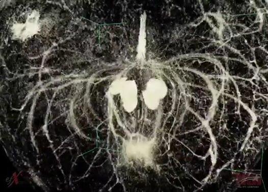 Яблоко в компьютерном томографе