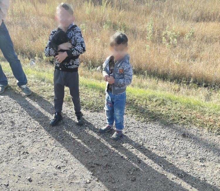 В Алтайском крае маленькие дети угнали у родителей BMW и попали в ДТП