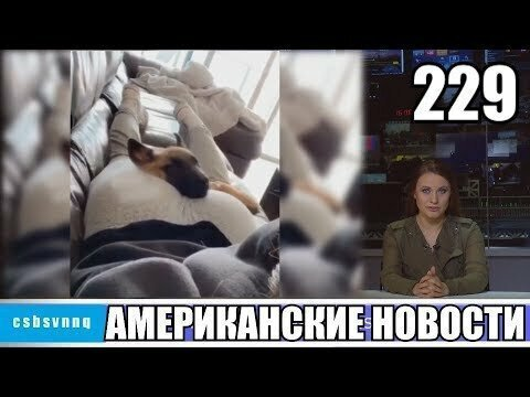 Hack News - Американские новости (Выпуск 229)