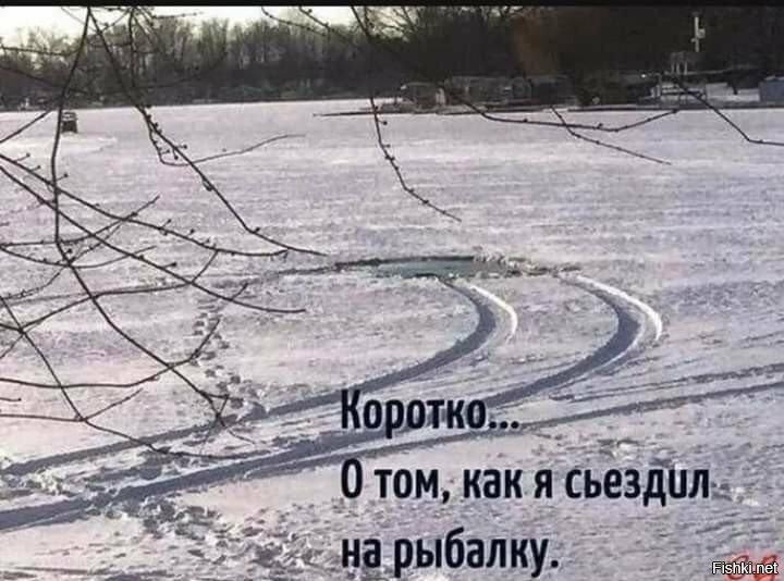 Солянка от Николай за 11 октября 2019
