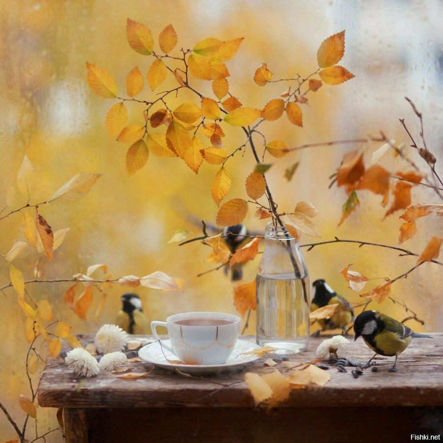 Осень для любителей кофе и