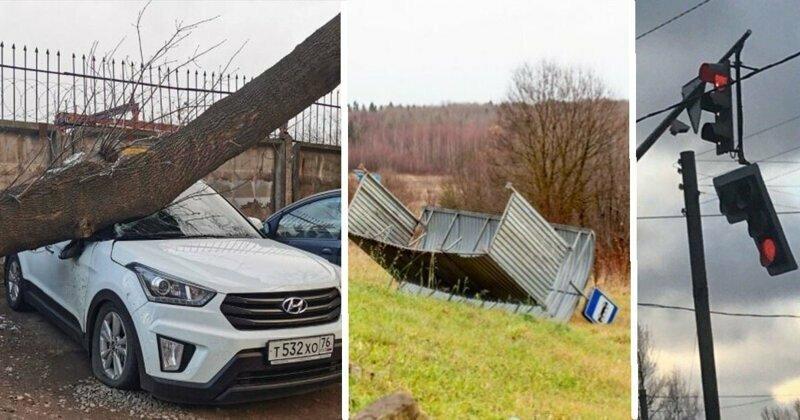 Жители Ярославля показали, что непогода сотворила с их городом