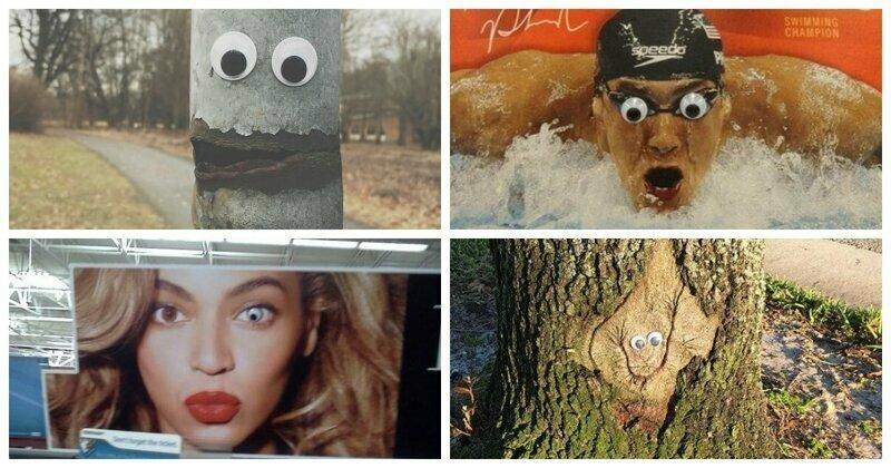 20 фото: удачно размещённые гугли-глаза могут внезапно поднять настроение