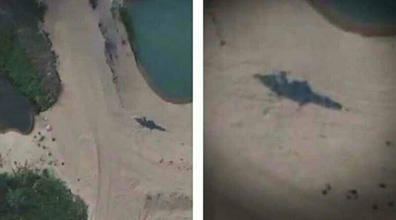 Пилот беспилотника запечатлел 7-метрового морского крокодила