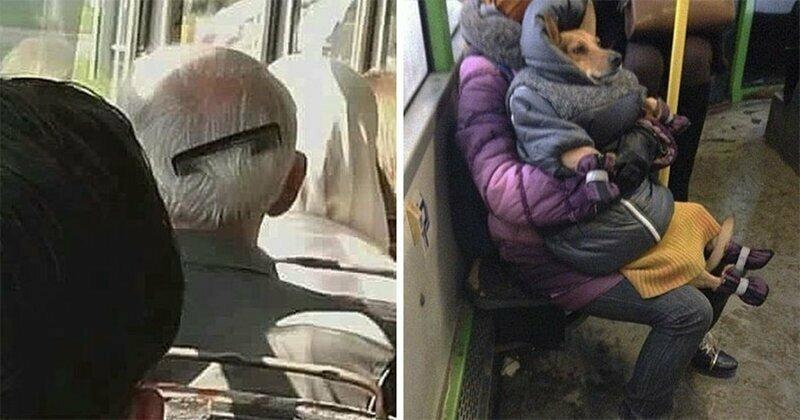 Люди из троллейбусов: смешные и странные персонажи из общественного транспорта