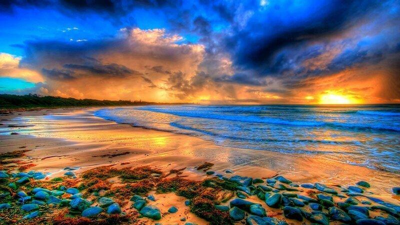 На берегу океана