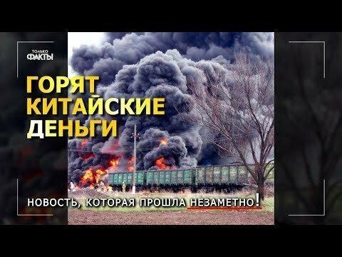 В Красноярском крае появился отряд неких партизан, которые препятствуют вывозу нашего леса в Китай!
