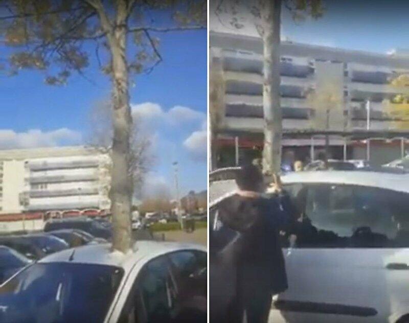 Французский креатив: дерево насквозь пронзило машину