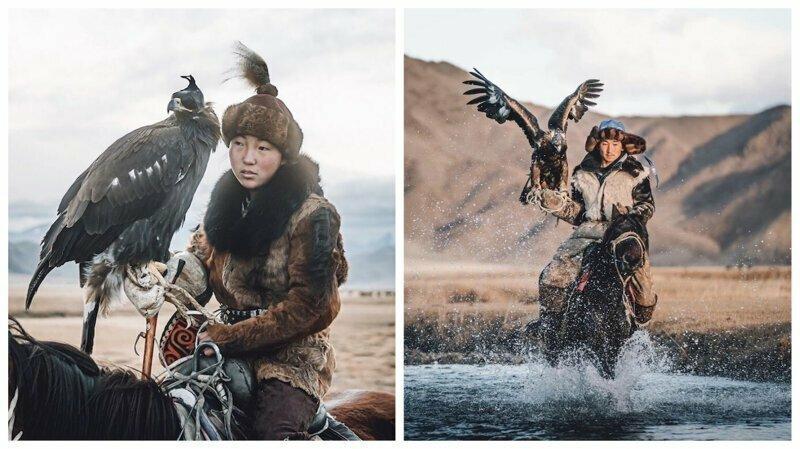 Удивительные фотографии соколиной охоты в Монголии