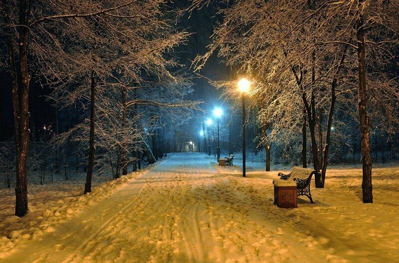 Длинные ночи, короткие дни: почему зимой день намного короче, чем летом?