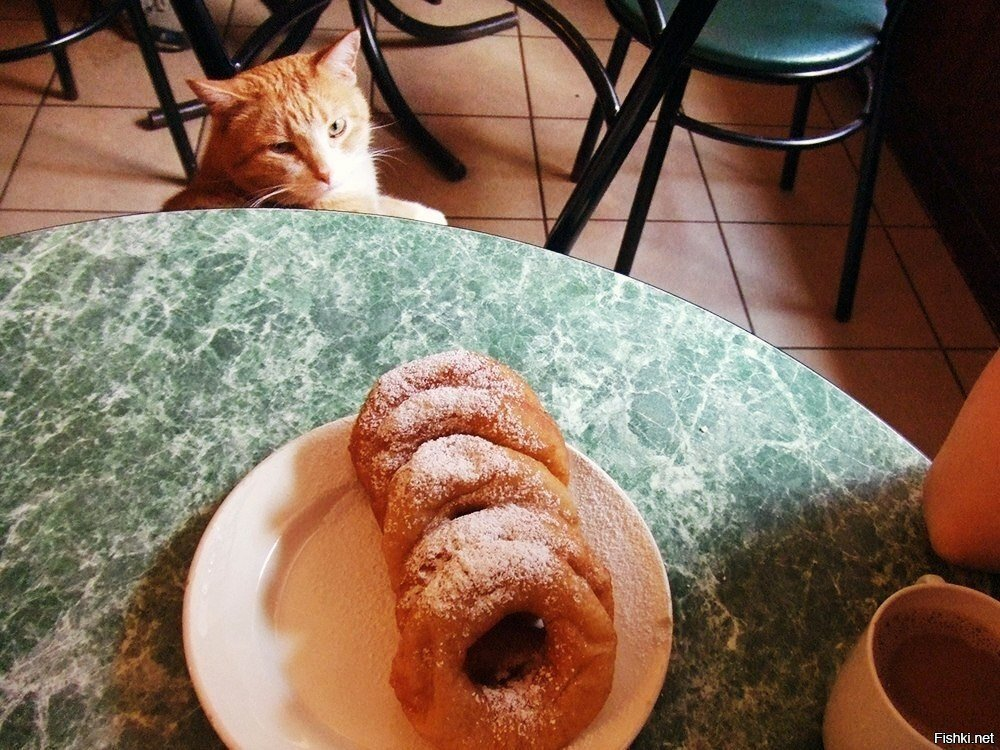 Вот я москвич и я называю эти колечки пончиками