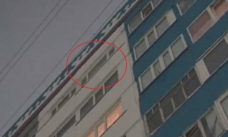 Кошка вытолкнула ребенка из окна
