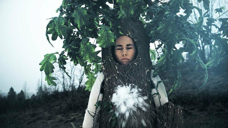 Снег из Москвы украли! Следствие ведет дерево
