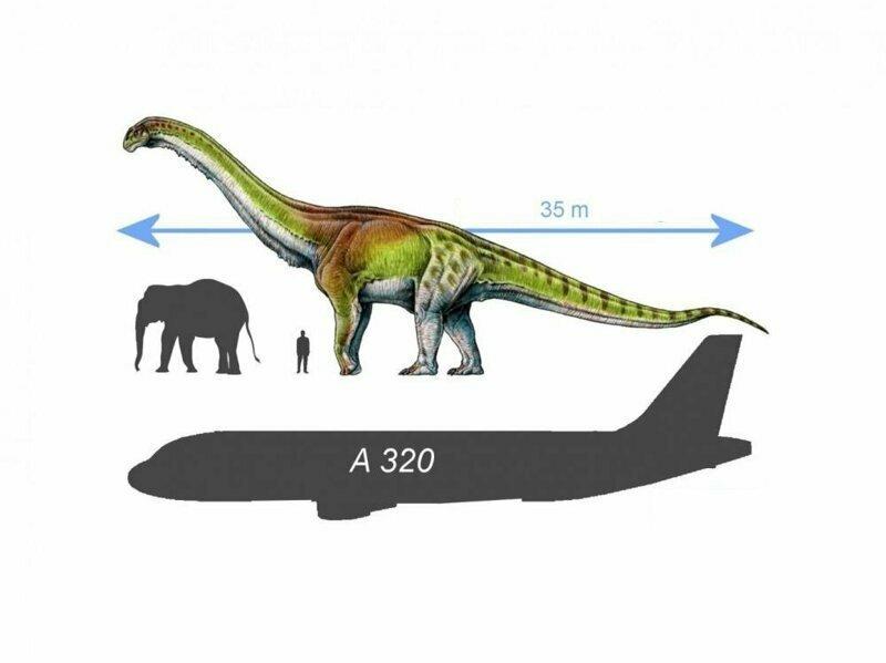 Почему динозавры были гигантами?