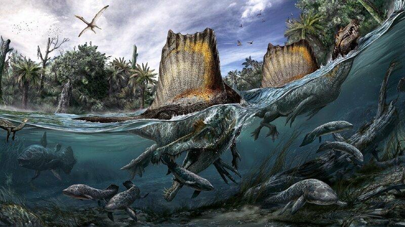 Климат во времена динозавров и чуть позже