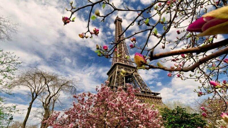 Бабушка Ольга из Парижа