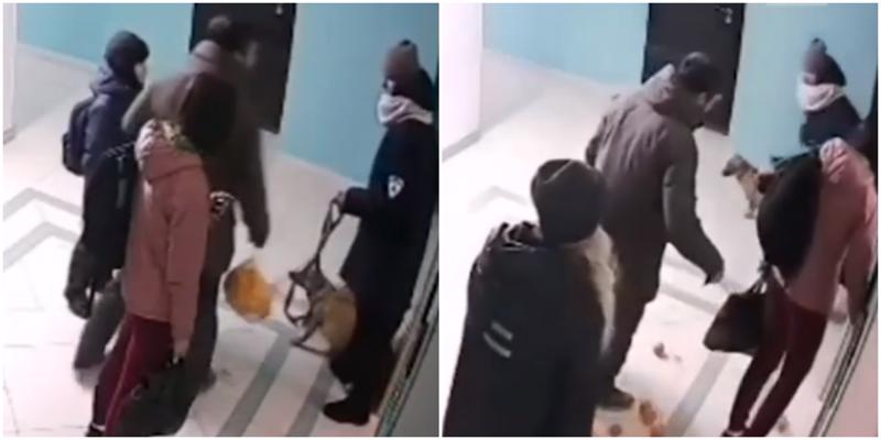 Любитель мандаринок из Владивостока отпинал женщину и её собак