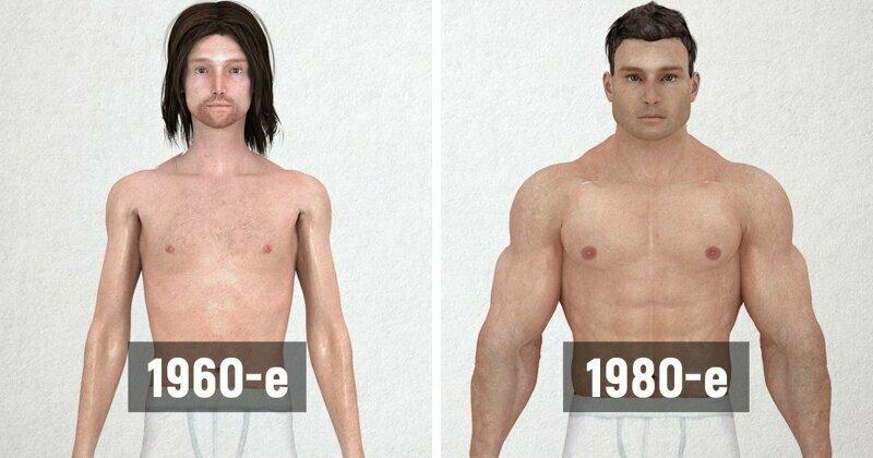 Как менялась мужская фигура за последние 150 лет