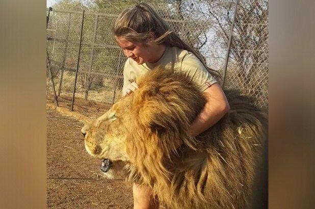 В ЮАР львы растерзали 21-летнюю девушку