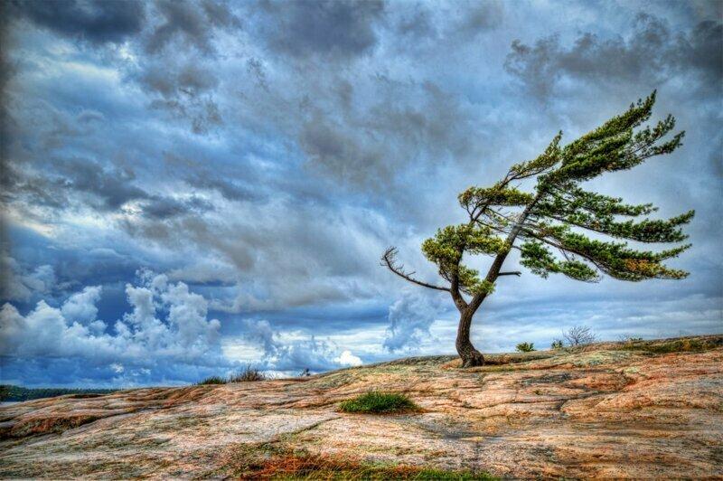Может ли ветер дуть сразу с двух сторон