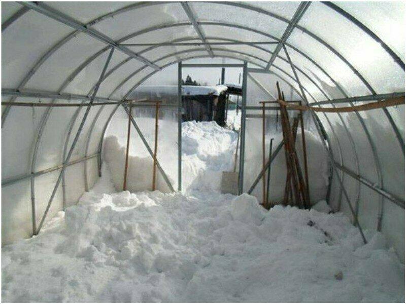 Нужно ли закладывать снег в теплицу