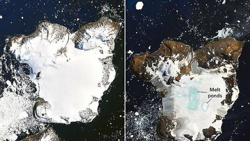 Таяние льда в Антарктике заметили из космоса