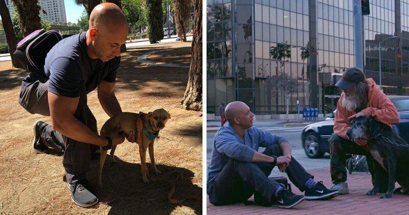 Добрый доктор Айболит: ветеринар бесплатно лечит животных на улице
