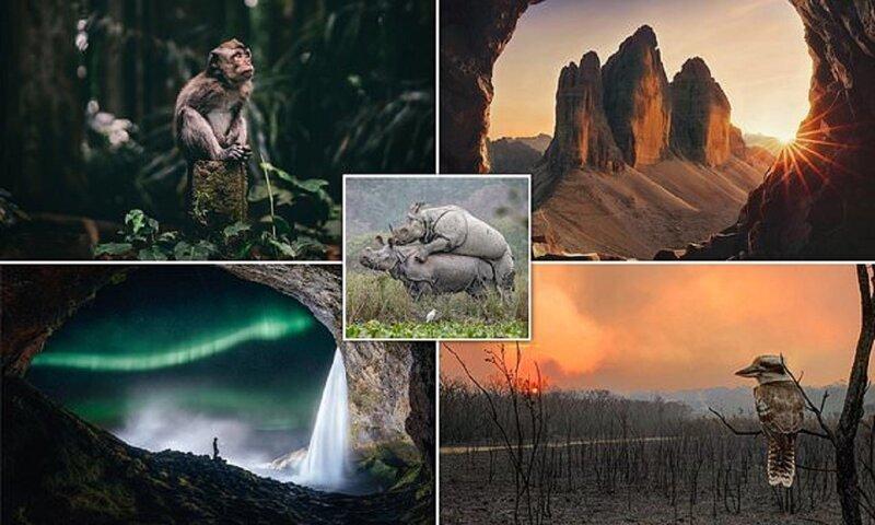Лучшие снимки Sony World Photography Award