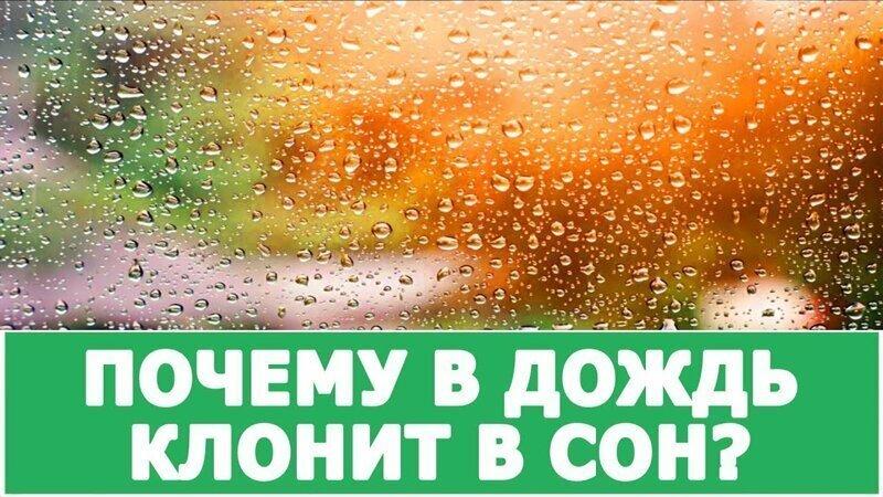 Настроение дождя: почему в дождливую погоду тянет поспать?