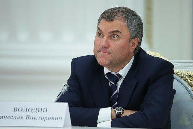 Володин предложил за нарушение карантина выписывать до 7 лет общего режима