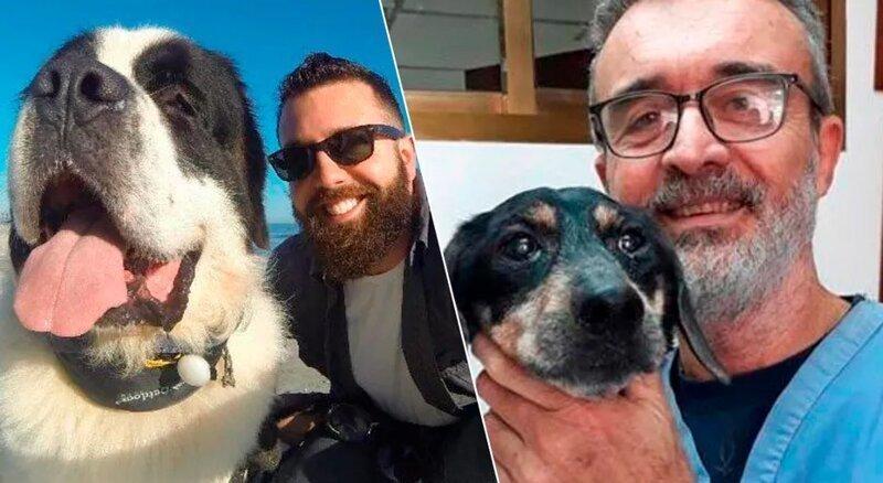 20 трогательных фотографий собак и их хозяев в начале дружбы и через много лет