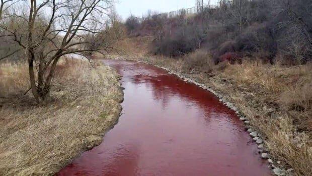 Красный ручей в Канаде напугал местных жителей