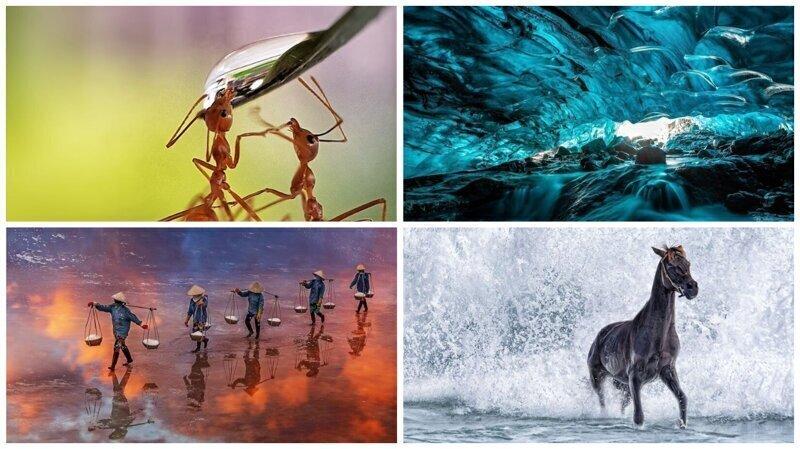 50 лучших работ фотоконкурса Agora #Water2020