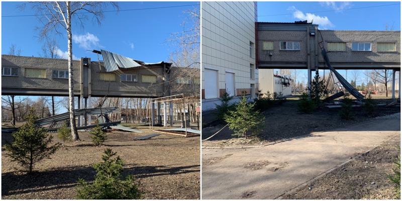 Сильный ветер в Омске снес крыши с домов и вырвал деревья с корнем